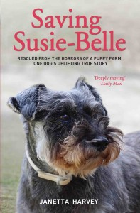 Saving Susie Bell PB Cover_Saving Susie Bell PB Cover