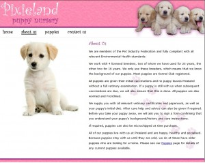 Pixieland5