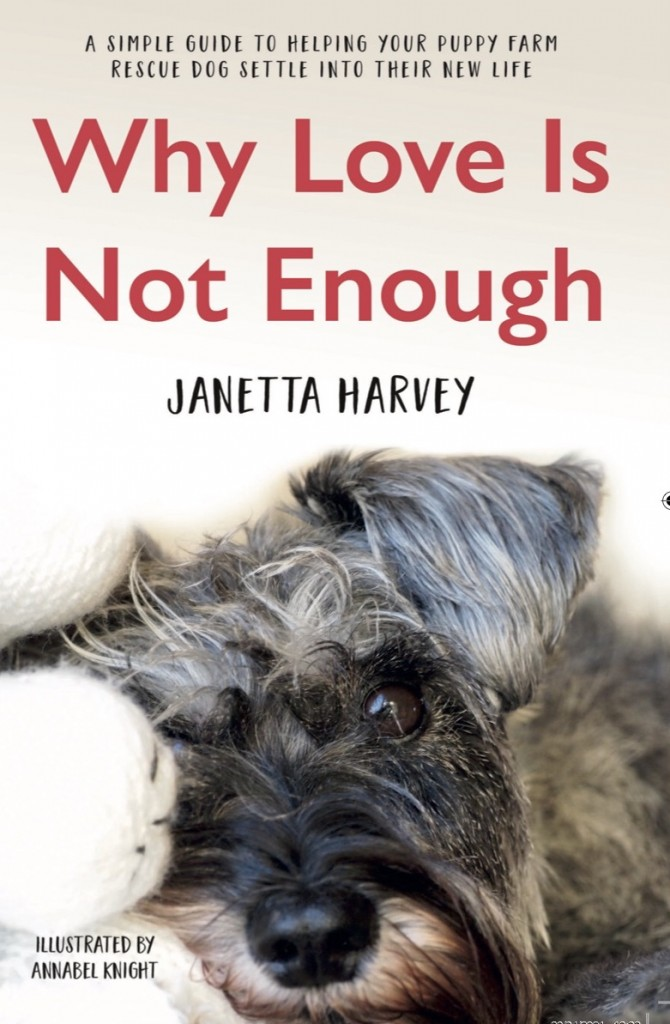 A book cover with the title Why Love Is Not Enough showing the face of a miniature schnauzer